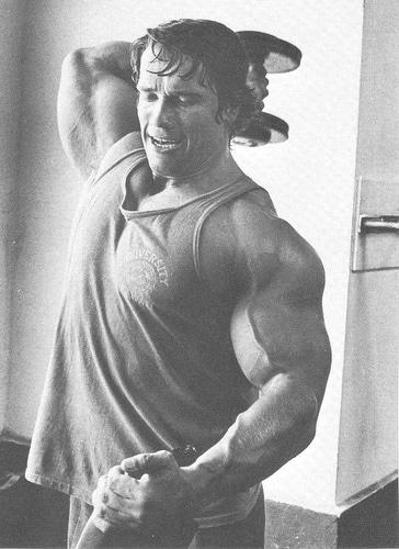 Guide de l'extension de triceps verticale