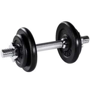 Quel Haltère de Musculation choisir ?