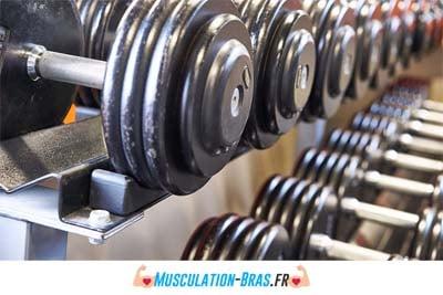 musculation aux halteres